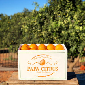 Papa Citrus, California Navel Oranges, Best Navel Oranges